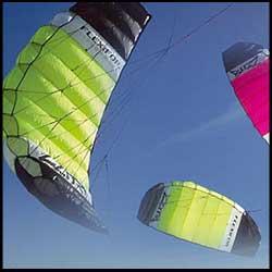 Flexifoil Sting Buzz Power Kite